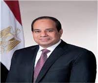 الرئيس السيسي يوجه بتأسيس البنية الكهربائية للمشروع العملاق «الدلتا الجديدة»