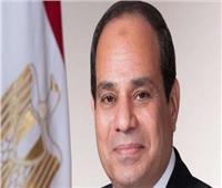 الرئيس السيسى :عدم التدخل فى أعمال القضاء قاعدة ذهبية لا نحيد عنها
