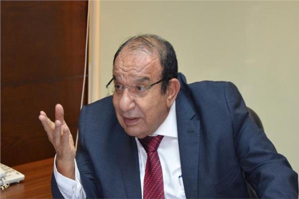 محمد عادل فتحي