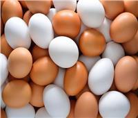 بشرى سارة للمواطنين.. كرتونة البيض بـ46 جنيه