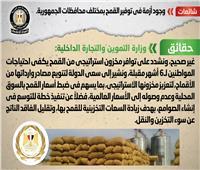 «معلومات الوزراء»:الحكومه تنفي وجود أزمة في توفير القمح ..والتوسع في إنشاء الصوامع